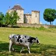 Bâtis_du_Quercy 355_1
