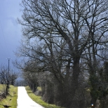 Paysages_Quercy 016