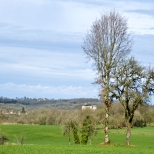 Paysages_Quercy 039
