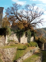 Paysages_Quercy 054_1