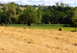 Paysages_Quercy 106_1