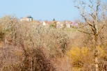 Paysages_Quercy 164_1