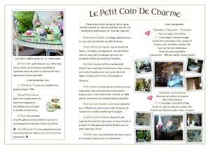 tri fold brochure FR copy